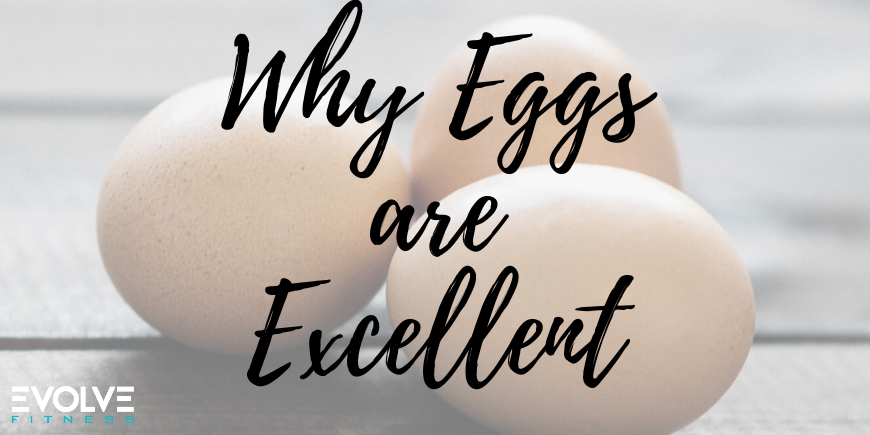 Why Eggs are Excellent